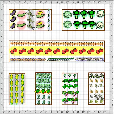 vegetable garden layout plan