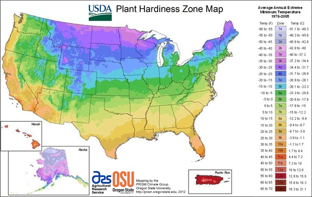 Planting Zones: Understanding Climates for Better Gardening