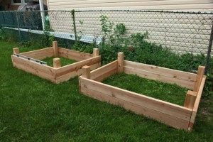 building DIY raised garden beds photo