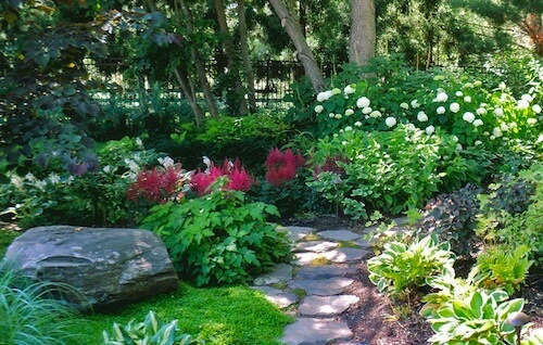 photo of shade garden design