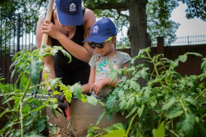 community garden work for the whole family photo