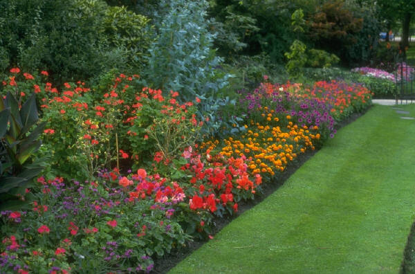The ultimate guide for a perfect flower garden in your yard perennial flower garden photo mightylinksfo