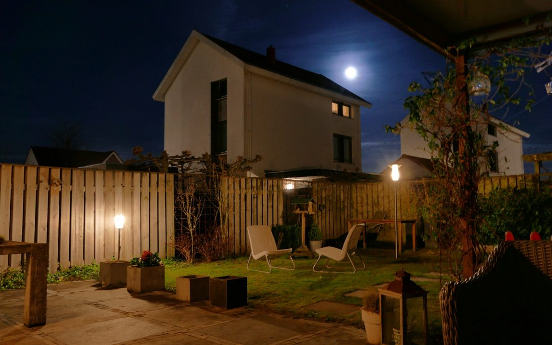 What Is A Moon Garden And How To Design It Beautifully