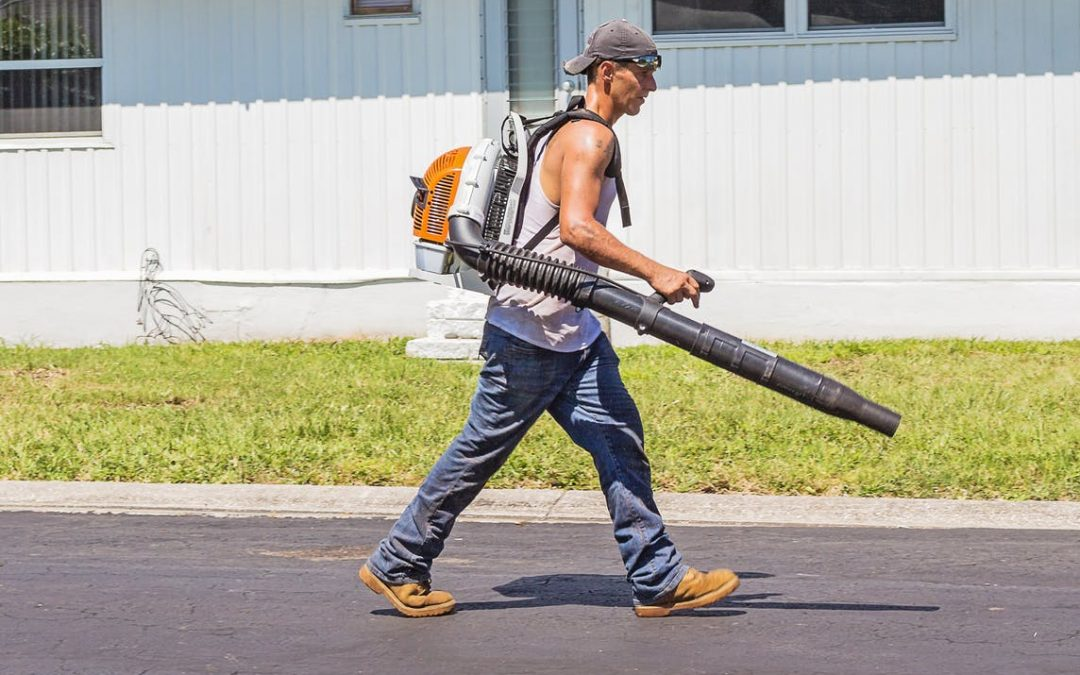Ryobi Leaf Blower Review: Will It Blow You Away?